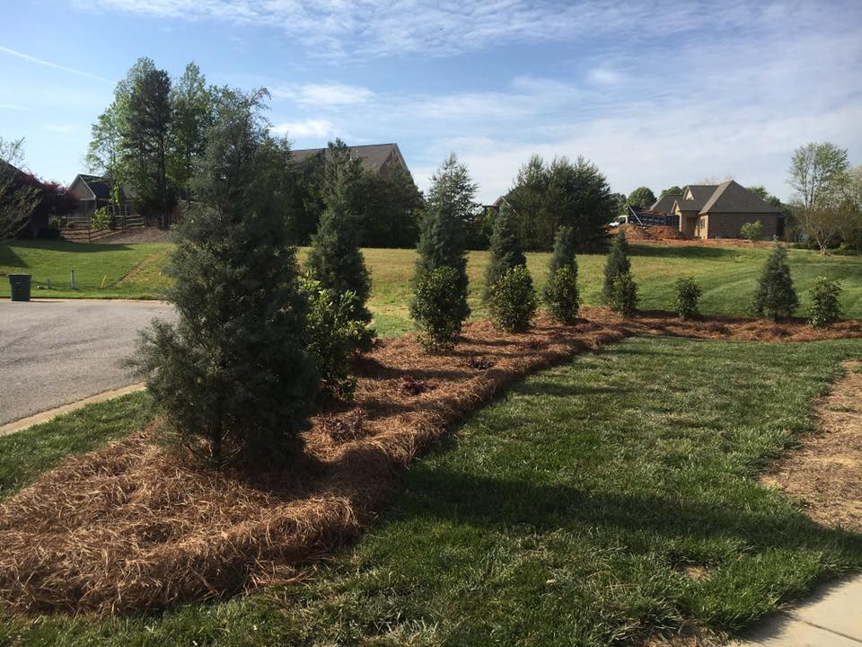 Charlotte Premier Landscaping Stewart S Lawn And